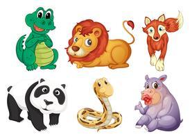 Sechs verschiedene Tierarten vektor