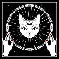 Weißes Katzengesicht mit Mond auf nächtlichem Himmel mit dekorativem rundem Rahmen. Hände mit Ringen.