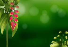 En grön brevpapper design med rosa blommor