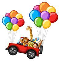 Många djur på jeep med färgglada ballonger