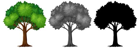 Set med olika träddesign vektor