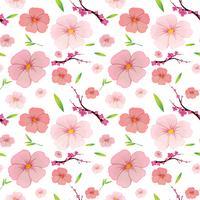 Rosa hibiskus och sakura sömlös bakgrund vektor