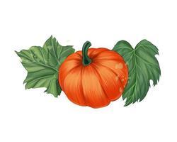Gemüsekürbis mit grünen Blättern aus bunten Farben. Spritzer Aquarell, bunte Zeichnung, realistisch. Vektor-Illustration von Farben vektor
