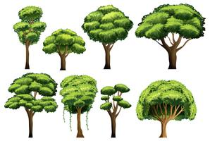 Träduppsättning