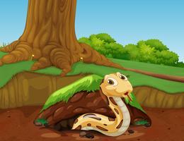 En vektor av orm i naturen