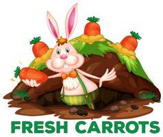 Ein süßes Kaninchen und Karotten