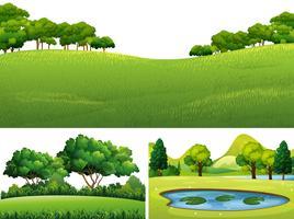 Drei Szenen mit grünem Rasen und Teich
