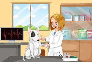 Tierarzt Doktor, der einem Hund hilft