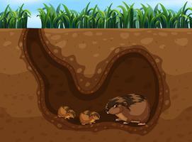 Meerschweinchen im Loch vektor