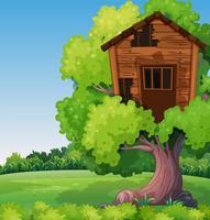 Gammal treehouse på trädet i parken
