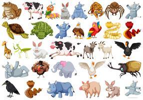 Set av djur charcter vektor