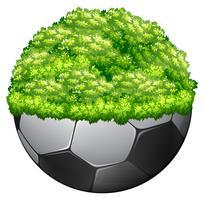 Fotboll och grönt gräs