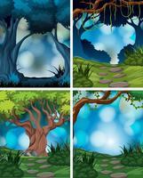 Set av regnskogscenen