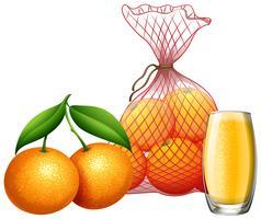 Frischer Orangen- und Orangensaft vektor