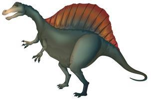 Spinosaurus vektor
