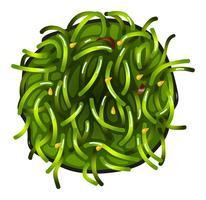 En toppvy av en grönsaks sushi vektor