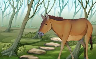 Ein Pferd am Wald vektor