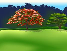 Bäume vektor