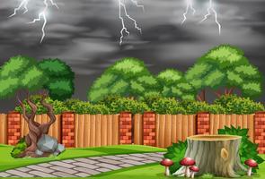 En naturträdgård i dåligt väder