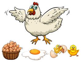 Kyckling och ägg i korgen vektor