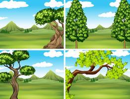 Scen med grönt gräs och berg