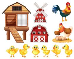 Hühner und Küken vektor