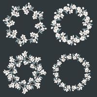 Ställ in samling av blommiga ramar. Kamille och glöm mig-inte-blommor runda mönster på svart bakgrund.