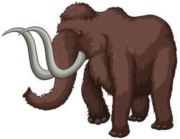 Elefant vektor