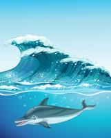 Delfin simmar under havet
