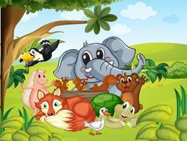 Vilda djur i fältet