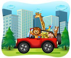 Vilda djur som rider på röd jeep