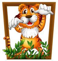 Tiger und Rahmen