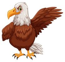 Eagle står på vit bakgrund vektor