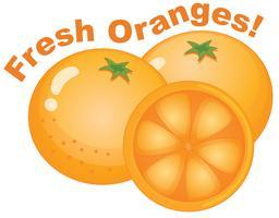 Frische Orange auf weißem Hintergrund vektor