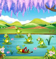 Grodor som bor i dammen
