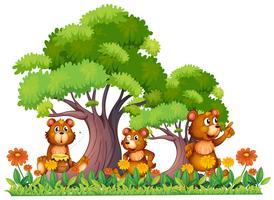 Tre små björnar i trädgården vektor
