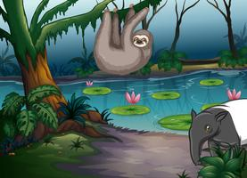 Tiere und Teich