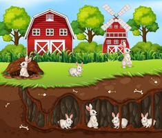 Kaninchenhaus unter der Farm vektor