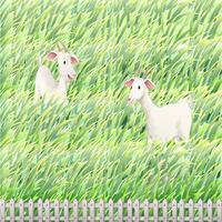 Zwei Ziegen auf dem Hof vektor