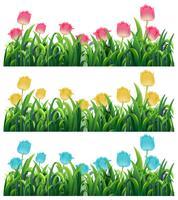 Bunte Tulpenblumen im Garten vektor