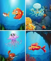 Fyra scener av havsdjur i havet