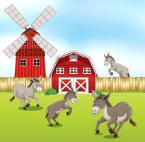 Esel auf dem Hof vektor
