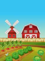 Gårdsplats med grönsaks trädgård och ladugård