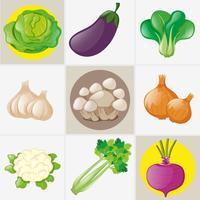 Olika typer av färska grönsaker