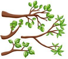 Olika utformningar av grenar vektor