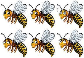 Wasps med olika känslor