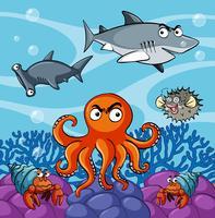 Seetiere, die unter dem Ozean leben