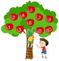 Zahlen zählen mit Äpfeln am Baum vektor