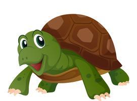 Nette Schildkröte mit glücklichem Gesicht vektor