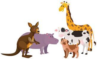 Många typer av gårdar och vilda djur vektor